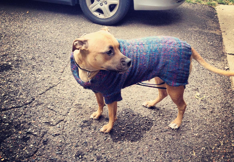 Sadie - Sweater